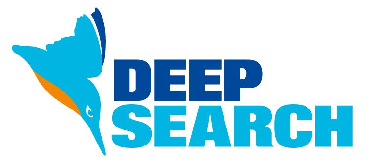 Deepsearch-Logo-durchsichtig-für-Web